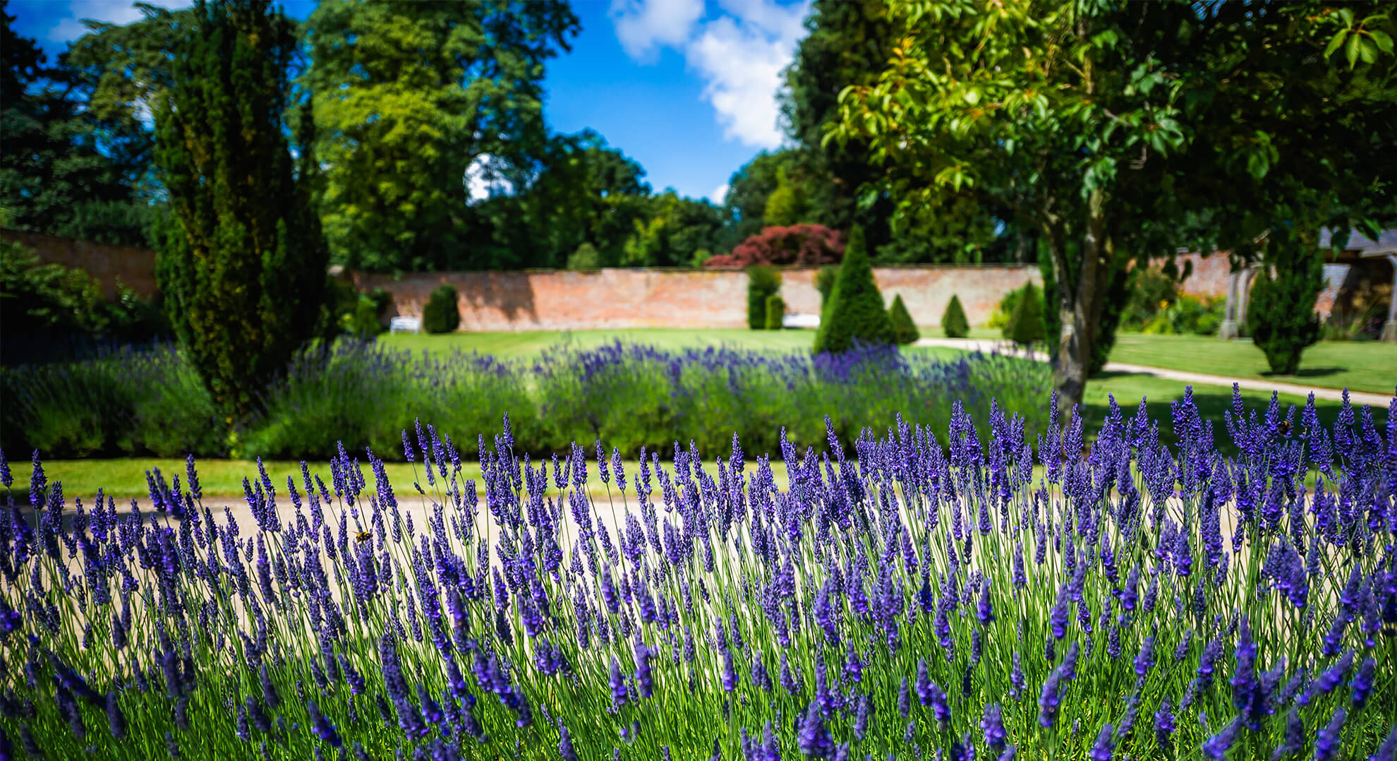 The beautiful Victorian Walled Garden and Pleasure Garden is open for you to enjoy - what's on Cheshire