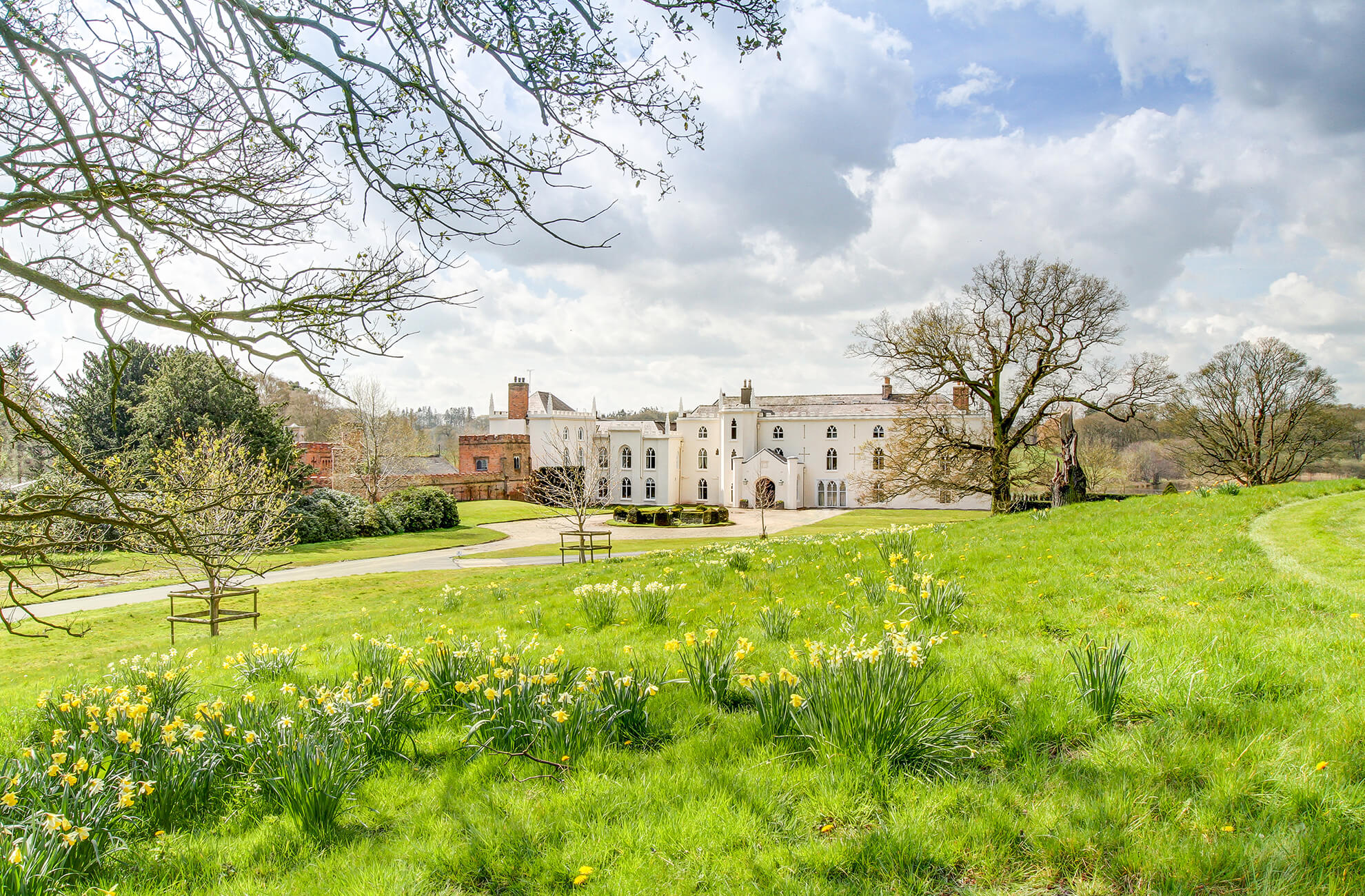 Combermere Abbey in Cheshire is the perfect setting for a spring wedding with daffodils adorning the driveway