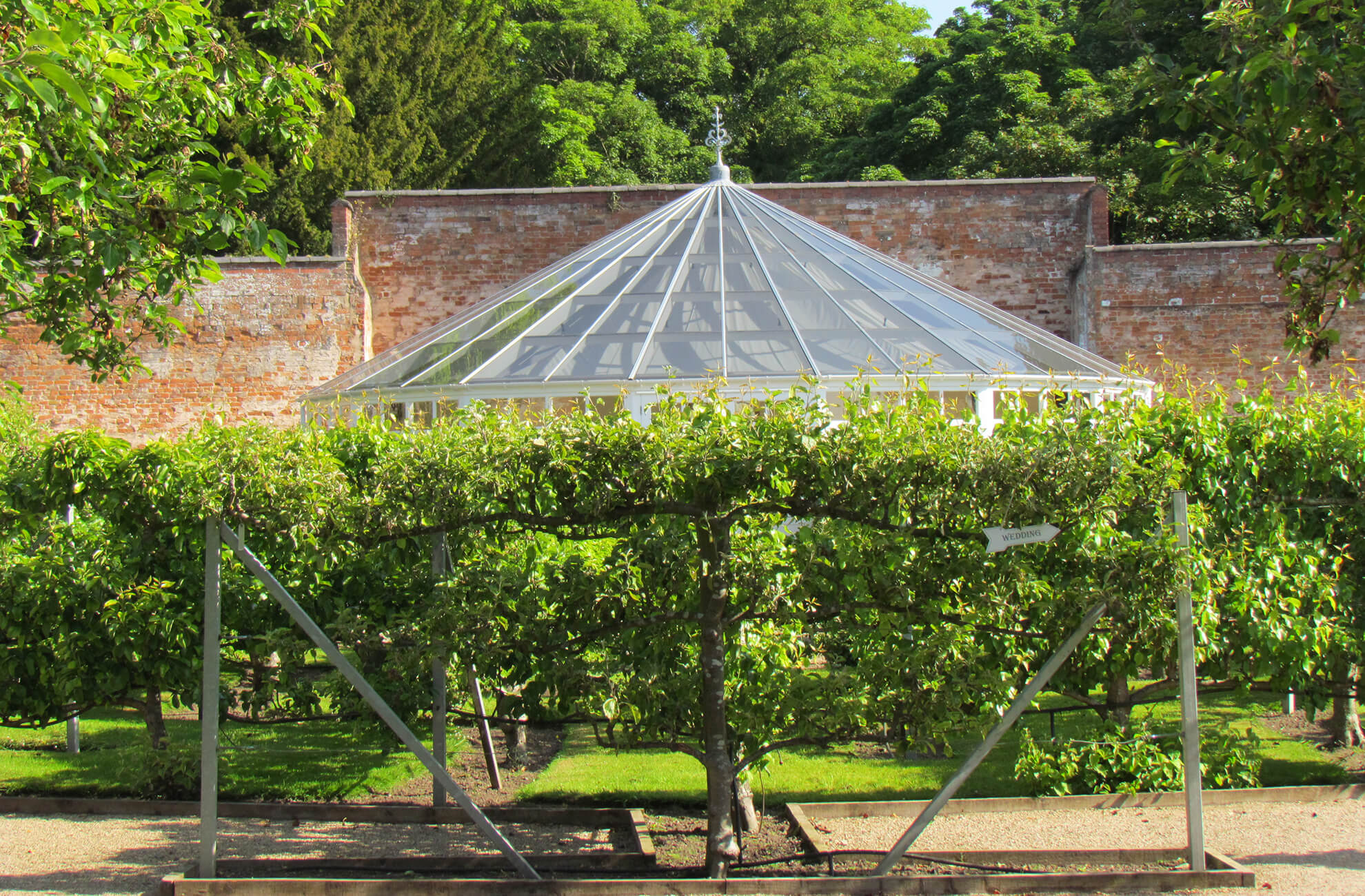 The fruit tree maze at Combermere Abbey surrounds the beautiful Orangery