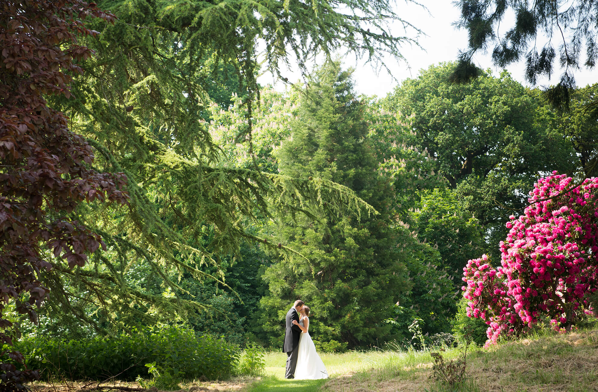 Newlyweds share a kiss in the ancient woodland at Combermere Abbey