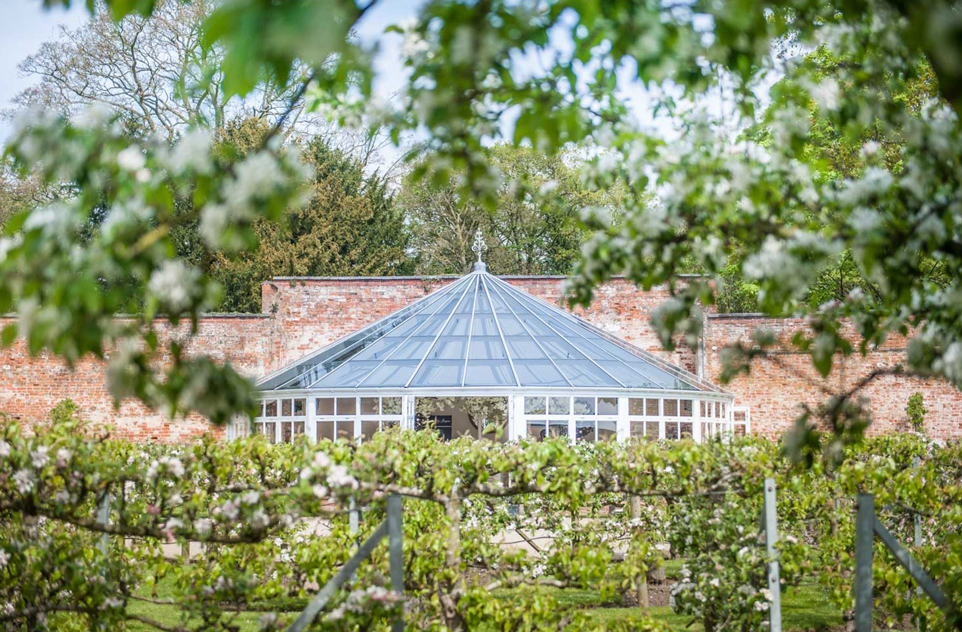 The Glasshouse at Combermere Abbey is the perfect wedding ceremony space and sits in the middle of the fruit-tree maze