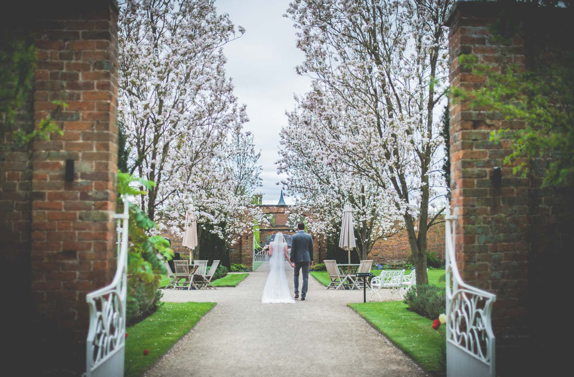 Newlyweds walk through the blossom trees at Combermere Abbey on their spring wedding day