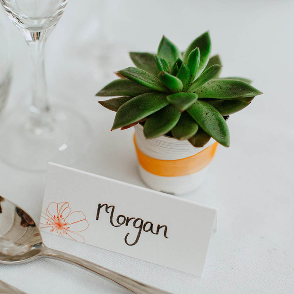 Succulents were given as alternative wedding favours for an intimate wedding at Combermere Abbey