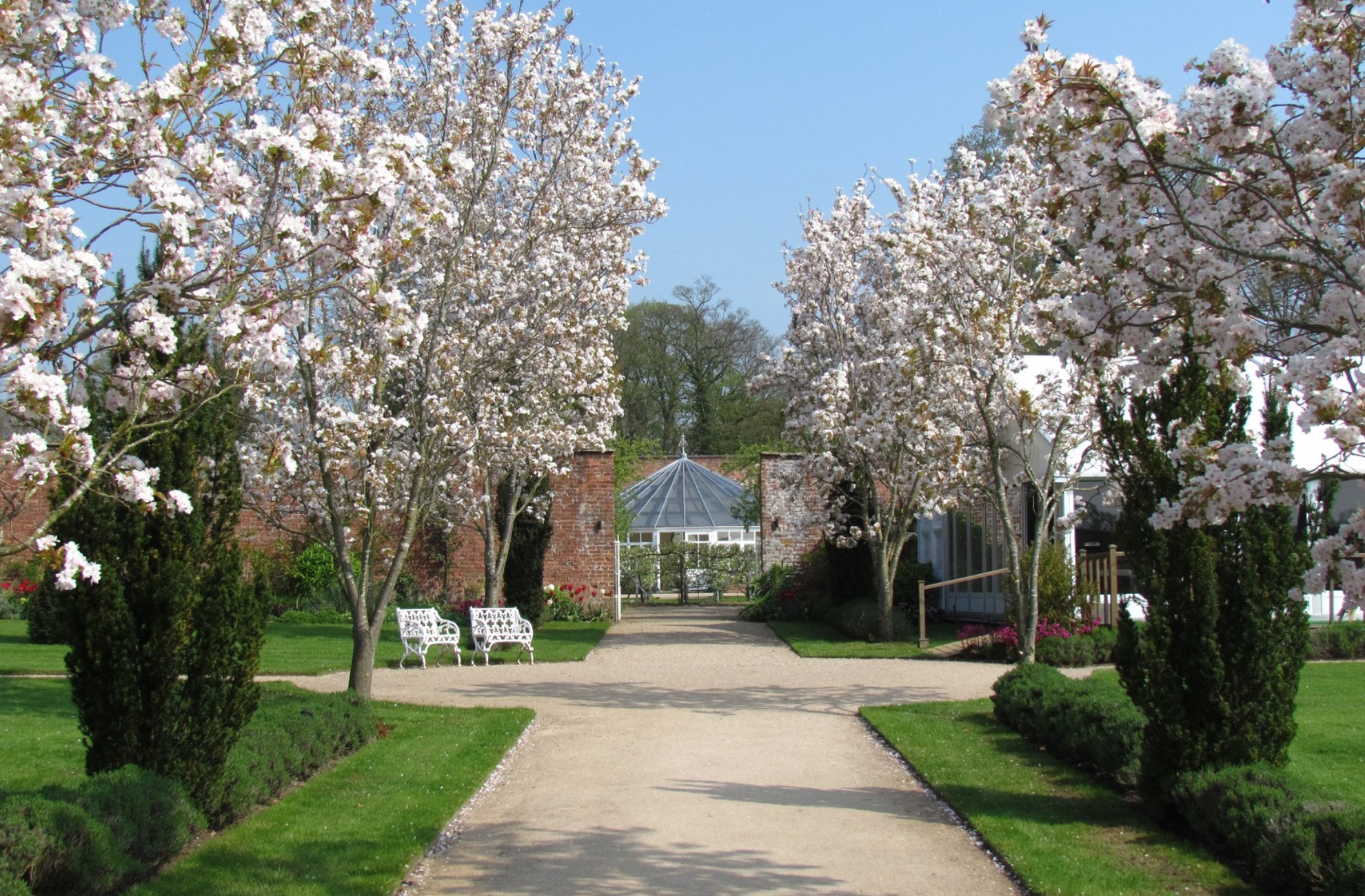 Large blossom trees look beautiful in the gardens at Combermere Abbey in the spring time