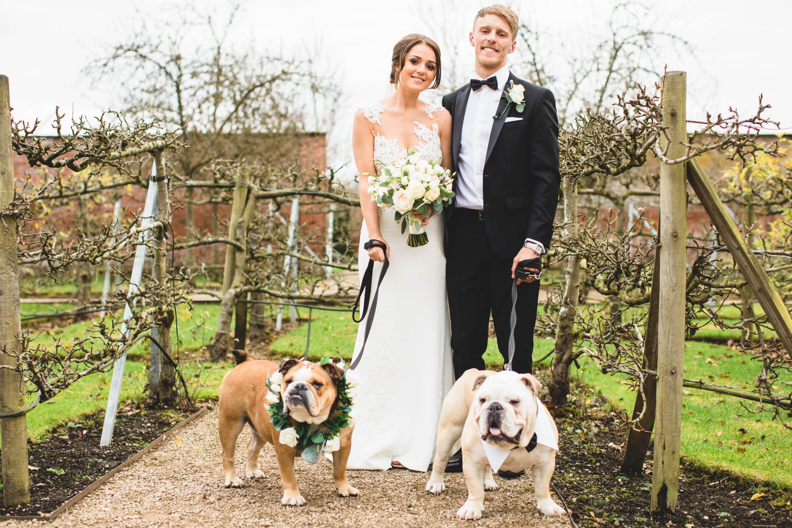 Bringing your dogs to weddings at Combermere Abbey